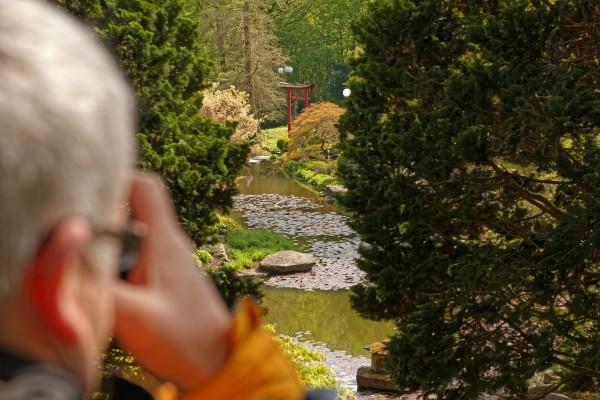 Fotografieren im Japanischen Garten im Dortmunder Westfalenpark