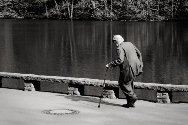 Kostenlose Webinare: Alter Mann mit Stock schlendert durch den Park.