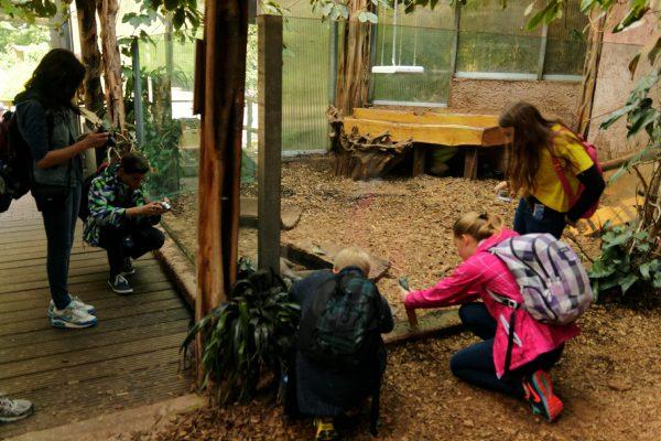 Die Kids haben die Riesenotter für sich entdeckt