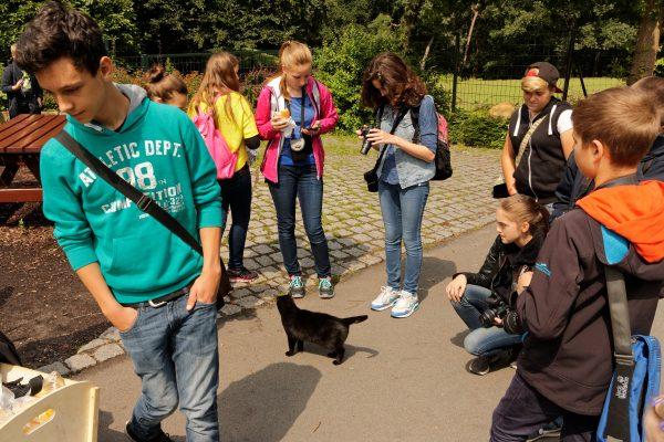 Die Kleine Fotoschule im Zoo. Zookatze Hexe ist ganz begeistert von uns