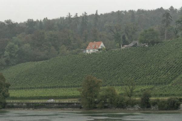 Ein Haus auf einem kleinen Weinberg am Oberrhein. Das Wetter ist diesig, das Bild wirkt sehr flau. Aufgenommen bei einer Urlaubsreise mit der Bahn