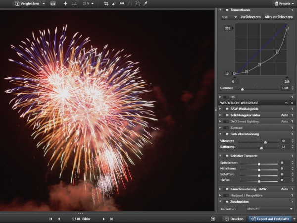 Feuerwerk_034